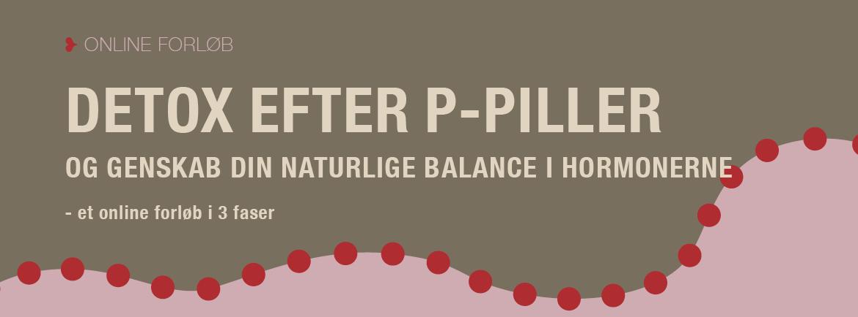 detox_efter_ppiller_final